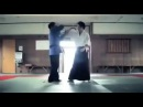 Hapkido x Aikido