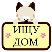 Животные Нижний Новгород
