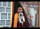 Lama Gyurme Calling the Lama from Afar