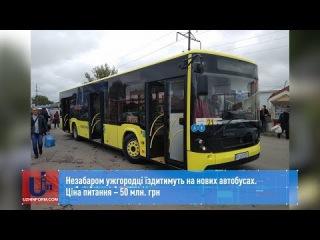 Незабаром ужгородці їздитимуть на нових автобусах. Ціна питання  50 млн. грн