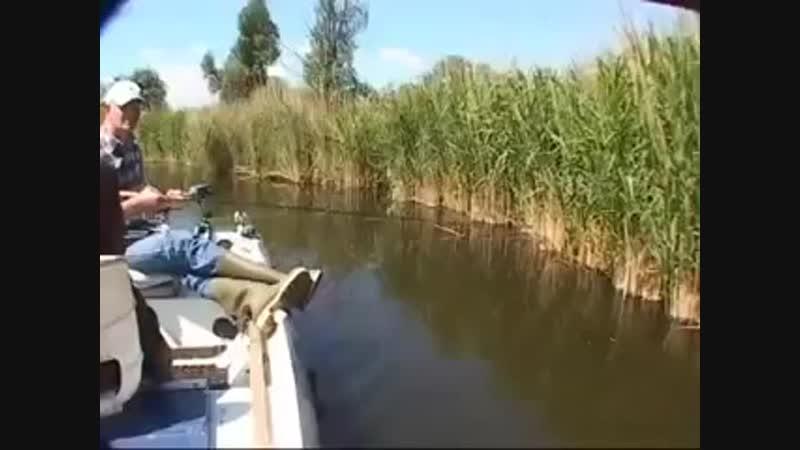 не рыбалка а ебалка