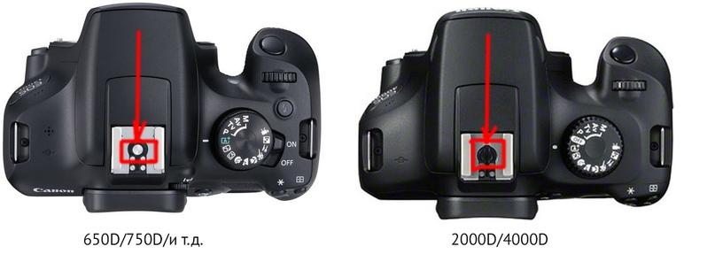 Обратите внимание на центральный синхроконтакт. Его просто нету в Canon 2000D/4000D — в студии со вспышками снимать не получится!