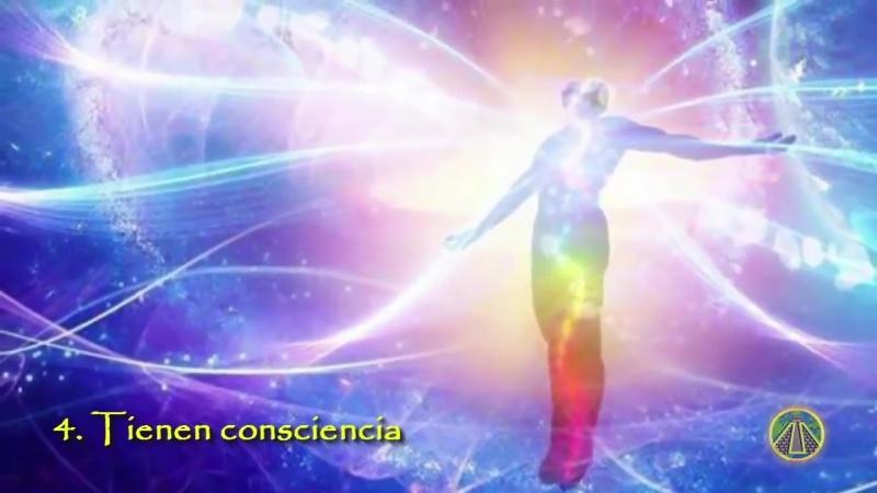 Erkenne ob Du auf dem Weg des Erwachens bist