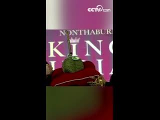 Король дурианов был продан в Таиланде за рекордные 1,5 миллиона батов