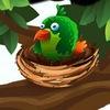 Tropic Birds