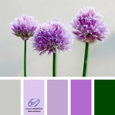 Сочетание цветов, изображение №3
