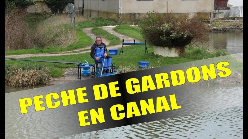 Pêche technique de gardons en canal avec B2