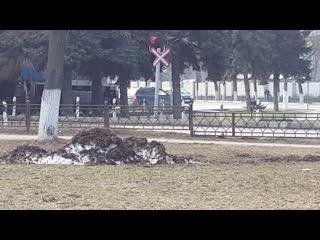 Машинист вынужден остановить  тепловоз г.Жуковский