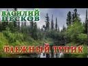 ВАСИЛИЙ ПЕСКОВ ТАЕЖНЫЙ ТУПИК ГЛАВЫ 01 08