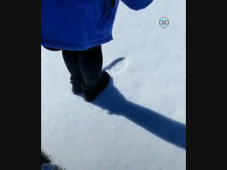 Теперь я знаю, чем зимой займусь (video-gif)