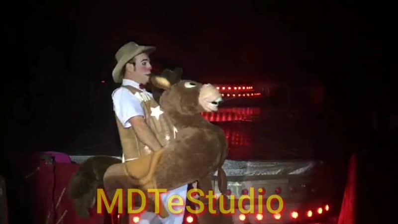 Bala no Alvo - Bullseye Toy Story