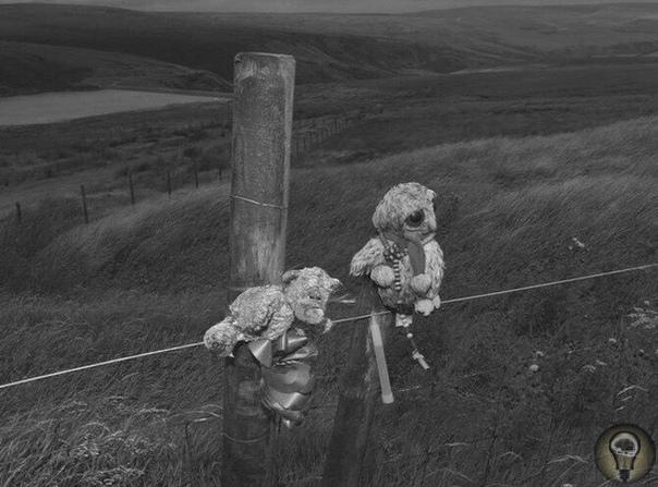 Игрушки, оставленные в 2012 году семьей 12-летнего Кита Беннетт на пустоши, где, как предполагается, находится его могила В 1964 году он стал четвертой жертвой «болотных убийц» Иэна Брэйди и