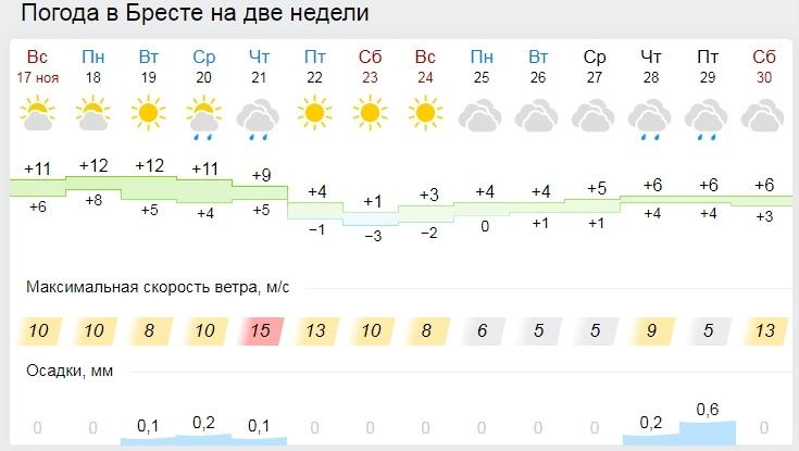 Синоптики предупредили о похолодании в Беларуси, могут быть первые морозы