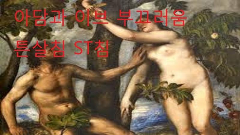튼살침 으로 치료하는 이유는 인간의 부끄러운 감정 성경 구약 창세기 아담 442