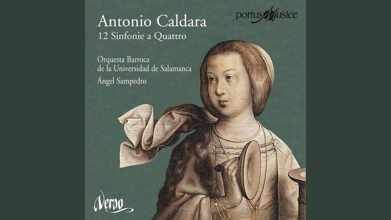 Sinfonia No. 1 in D Major (arrangement of oratorio sinfonia Il martirio di San Terenziano) : I....