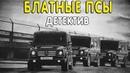 Мощный фильм про 90-е БЛАТНЫЕ ПСЫ Русские детективы 2020 новинки