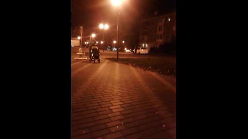 Ночная сходка