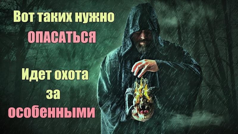 Идет охота за Особенными людьми будьте осторожны. Кто такие Избранные и Особенные. | Сон Разума