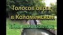 Голосов овраг в Коломенском Тайны старого парка