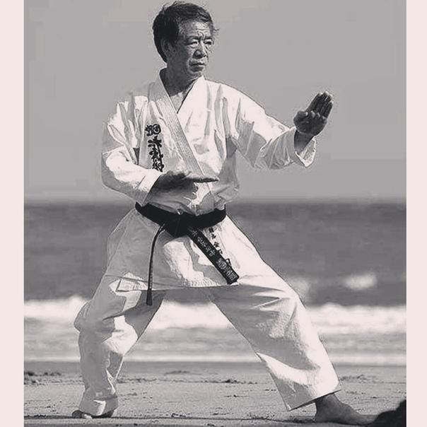 фото стойки каратэ по японски конасова свой шурум