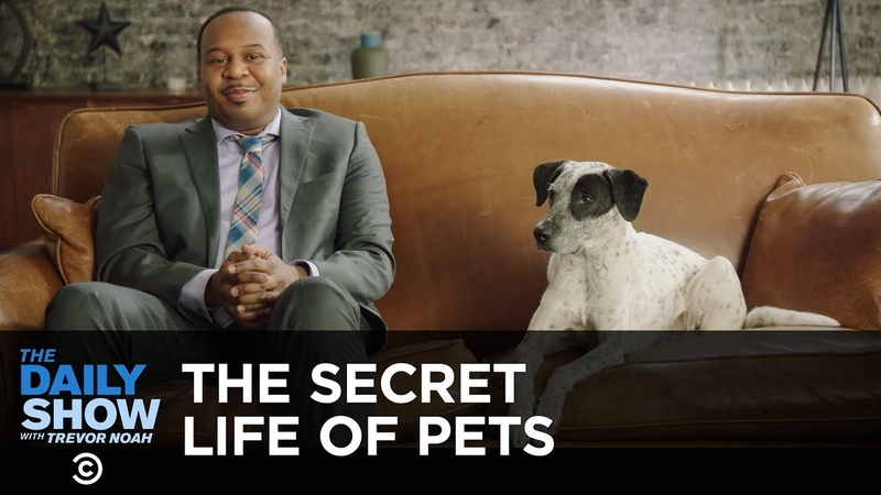 Roy Investigates the Secret Life of Pets | The Daily Show