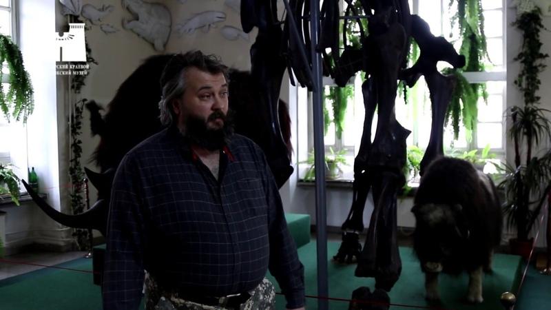 Музейный карантин скелет мамонта