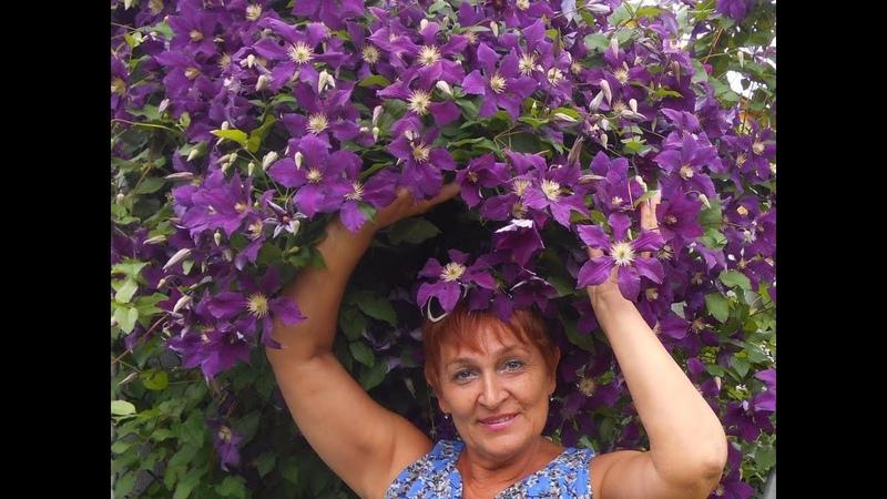 Рита Нестерова-лучший цветовод года. Из группы цветы и вдохновение.