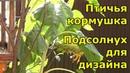 Подсолнухи - отличное растение для декора. Как выглядит кормушка для птиц зимой и летом.