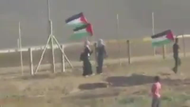 Othman Hilles 14 ans est abattu à Gaza par les militaires du régime israélien