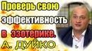 Проверь свою эффективность в эзотерике! Андрей Дуйко школа Кайлас