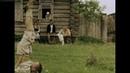 Время жатвы (2004) - драма