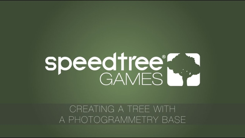Timelapse Creating a Tree Using a Photogrammetry Base