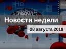 Медвестник ТВ Новости недели №174 от 28 08 2019