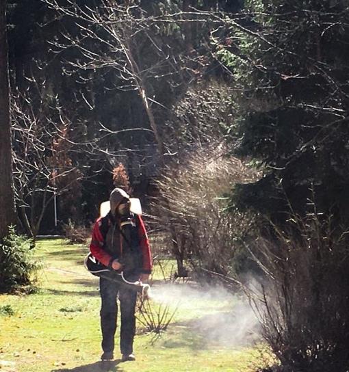 Решили подстраховаться и провести тотальную дезинфекцию леса от коронавируса!