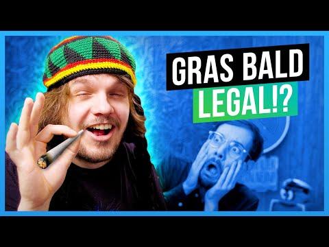 Die dämliche Marihuana-Diskussion
