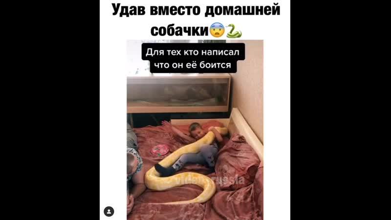 Малыш со змеюкой
