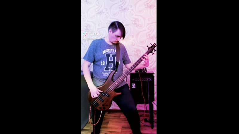 Megadeth Symphony Of Destruction bass cover mp4
