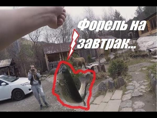 Рыбалка на Эльбрусе Дорога на Домбай Если горы к тебе не идут Выпуск 8 Вып7