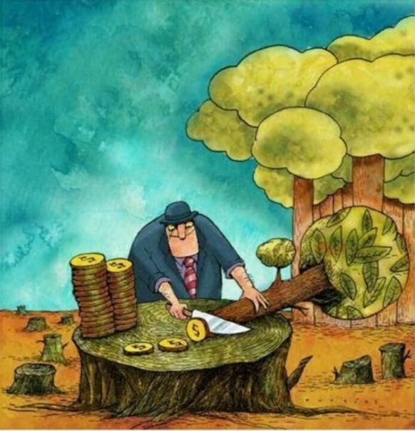 Ущерб, наносимый планете вырубкой лесов