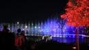 Дубай в центре Ташкента: фантастическое шоу танцующего фонтана - видео