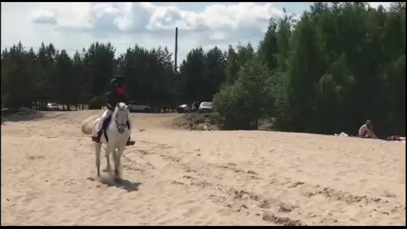 Темнокожий принц на белом коне Шоу Натальи Кемаль mp4