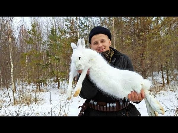 ВОТ ЭТО ЗАЯЦ ОХОТА НА ЗАЙЦА Охота на зайца с гончей 2020