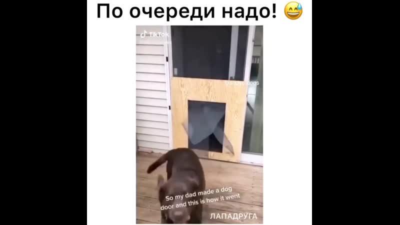 Подумаешь, дверь вынесли...