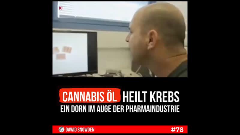 78 Cannabis Öl heilt Krebs Ein Dorn im Auge der Pharmaindustrie