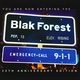 Blak Forest - Just Wanna Be a Star
