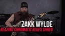 Zakk Wylde Blazing Fast Chromatic Blues Shred Lick