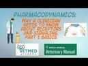 Фармакодинамика рецепторы и передача сигналов Часть 1 Основы Pharmacodynamics Receptors and Signal Transduction Pt 1 Basics