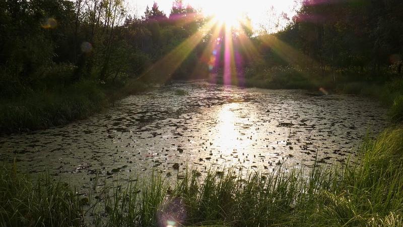 Один день из жизни горного озера / One day in the life of a mountain lake