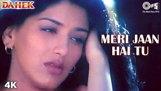 Meri Jaan Hai Tu | Akshaye Khanna | Sonali Bendre | Alka Yagnik | Dahek Movie | 90's Sad Song