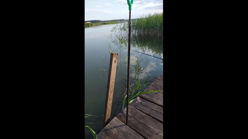 Рыбалка в Гоже